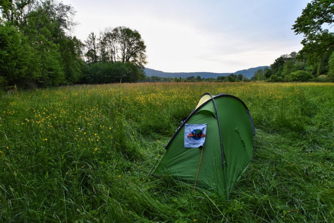 Tent in green field camping