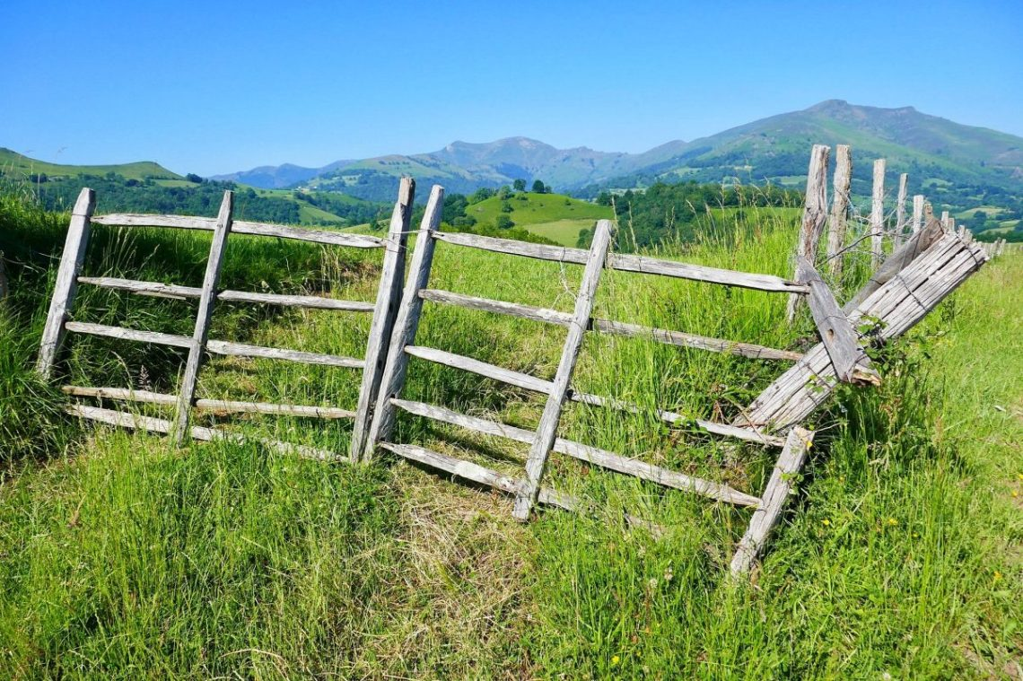 The Camino Frances Hiking Trail