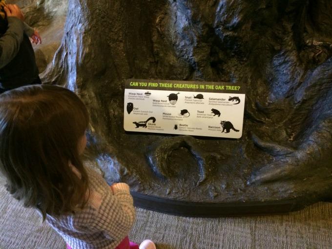 finding creatures
