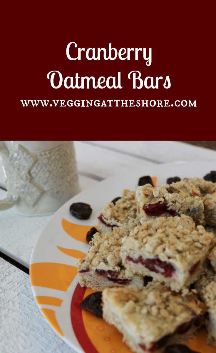 cranberry-oat-bars