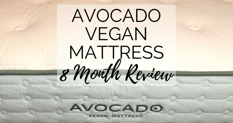 Avocado Vegan Mattress (8 Month) Review