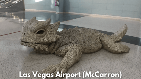 Las Vegan Airport Vegan Options