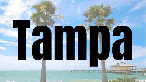 Tampa Airport Vegan Options