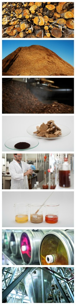 A collage of the various stages of the process to extract chestnut tannin