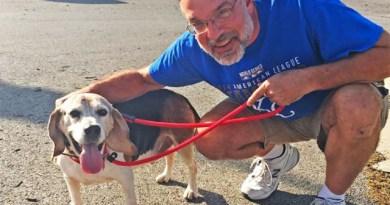 Homem abre orfanato para cães abandonados