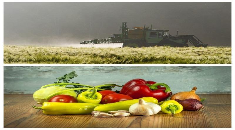 Brasil tem importação recorde de agrotóxicos no primeiro ano do atual governo