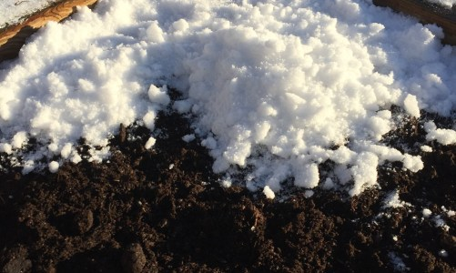 Different Methods for Winter Sowing
