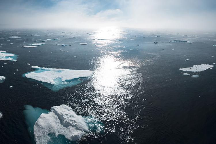 Scener ur hjärtat – klarspråk om klimathotet