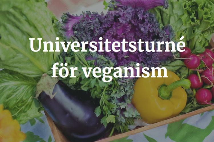 Grönsaker i en korg med texten Universitetsturné för veganism i vitt