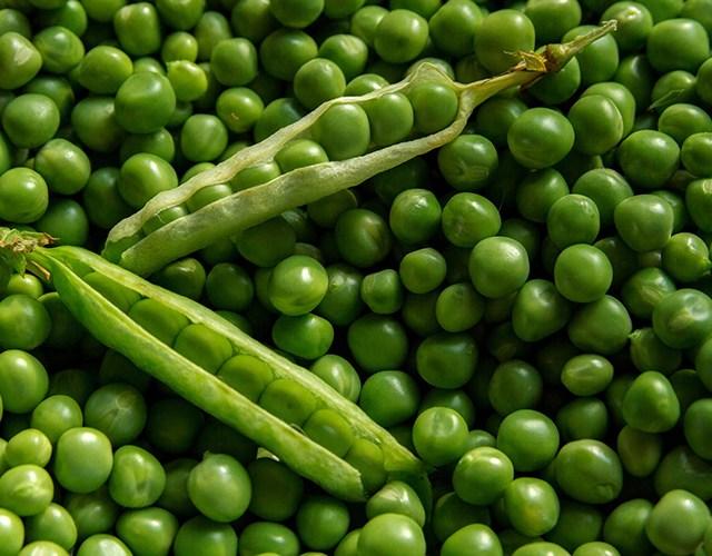 Gröna ärter, ovanpå några kvar i ärtskidor