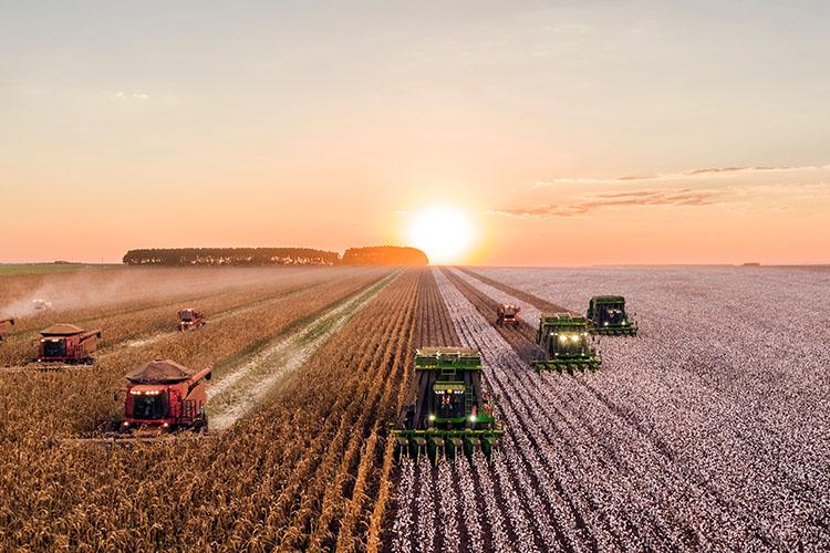 Jordbruksmaskiner längs odling i solnedgång