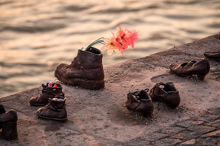 Skor på en mur, en blomma sticker upp ur en av dem