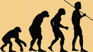Paleo Diet - evolution
