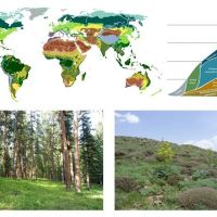Vegetation Classification and Survey (VCS) is inviting proposals for a Special Collection of papers on the 'International Vegetation Classification'