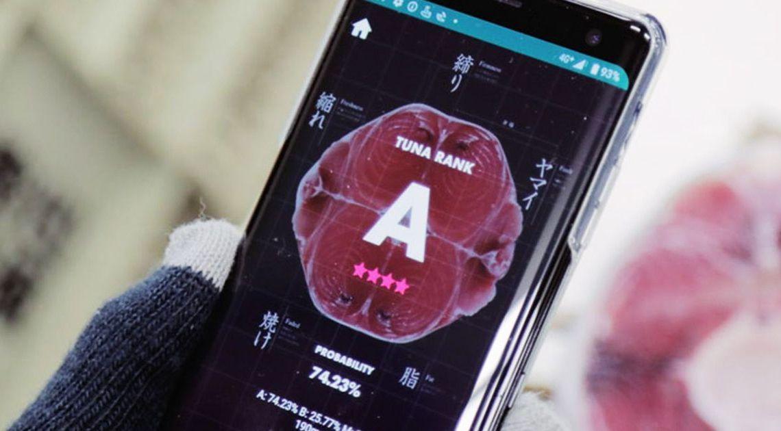 Tuna Scope, l'application qui utilise l'intelligence artificielle pour évaluer la qualité du thon – Siècle Digital