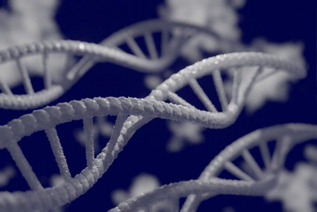 Quand le Machine Learning aide les scientifiques à créer des protéines artificielles – FREDZONE
