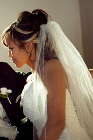 Bridal Veil silver pencil edged