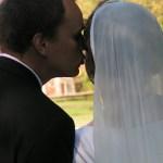 Chiffon Veils - Mantilla Veils