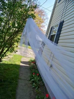 Extra long blusher veil