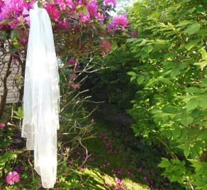 Fingertip waterfall veil