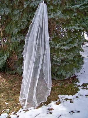 1 tier scalloped pencil edg veil