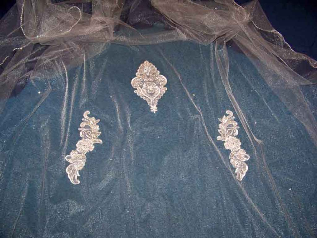 a glimmer illusion veil with lace appliques and beads