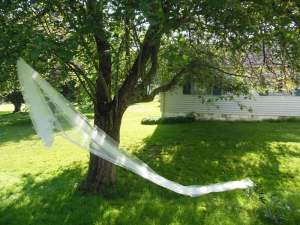 Oval Royal Veil with Wide Ribbon