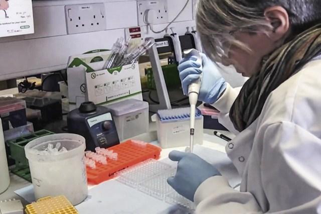 Governo assina contrato da vacina de Oxford, mas 'esquece' de anunciar    VEJA