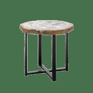 Tavoline fossile druri