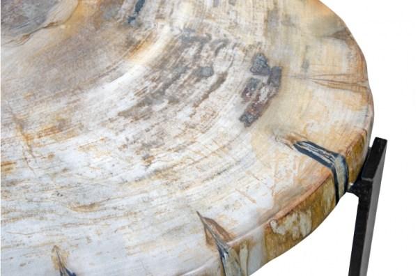 Tavoline Fossile Pw8