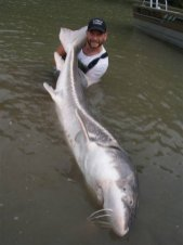 sturgeon-fishing-178