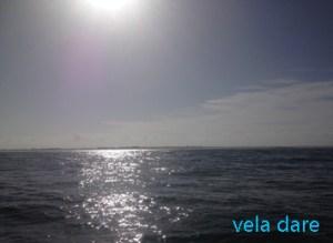 Mer2-300x219 Nach Figueira da Foz europa  segeln Portugal Hafen Figueira da Foz