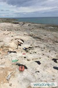 Côte Atlantique de lîle où les déchets s'accumulent