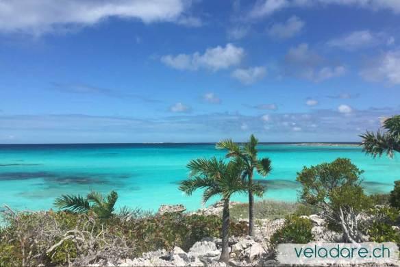 Ein Highligh von 2019: Flamingo Cays, Bahamas