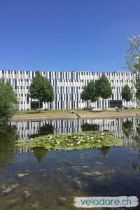 Liebefeldpark