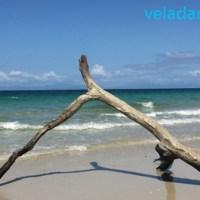 Panama: îles de Las Perlas sud