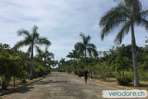 Isla Viveros: Grosse Strasse und keine Leute (Inseln von Las Perlas, Panama)
