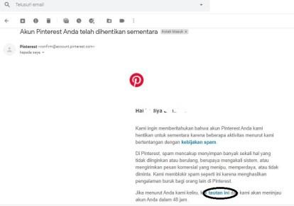 Gambar 1 : Akun Pinterest di Suspend