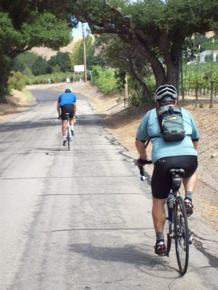 Heading up Willow Creek.