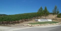 Hammersky Winery on Vineyard.