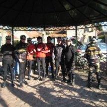 12Renards-des-sables-fevrier-2015