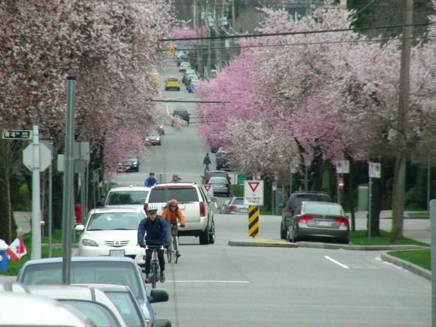 dscn1615-cypress-and-4th-traffic-calming-single-lane-bike-permeable-r