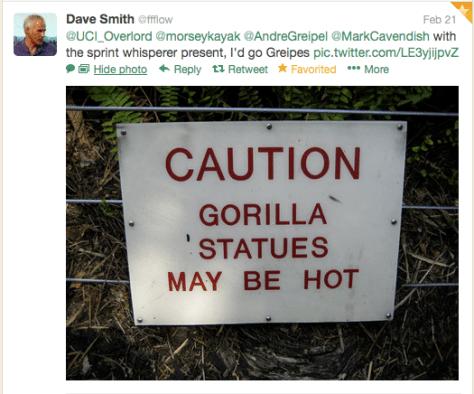 Gorillas hot