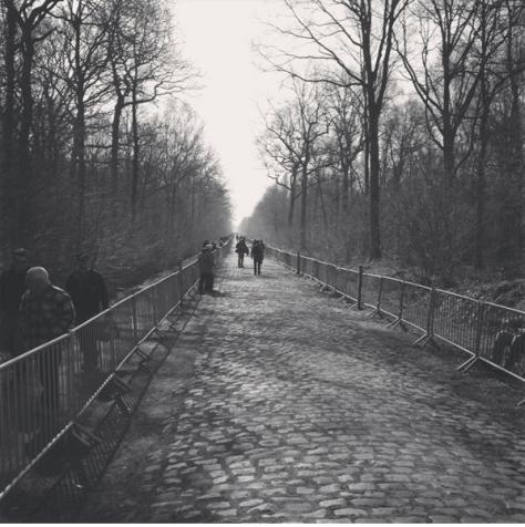 Roubaix cobbles 1 CREDIT: JON BAINES