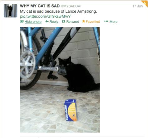 G Cat sad because of Lance