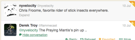 St11 praying mantis