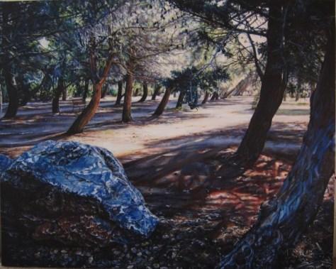 Park Near St Esteve