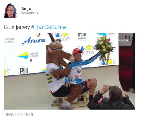 Suisse moose 3