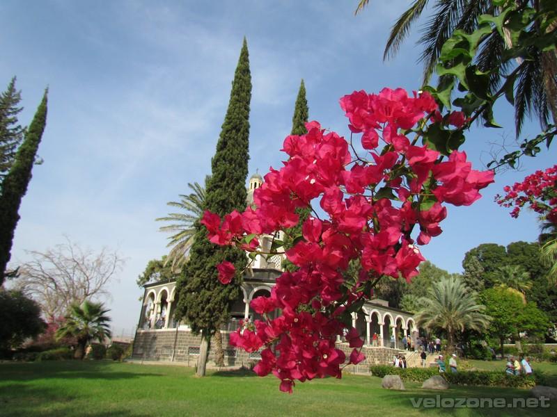 Izrael 2012 - galeria zdjęć