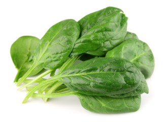 Spinach on white